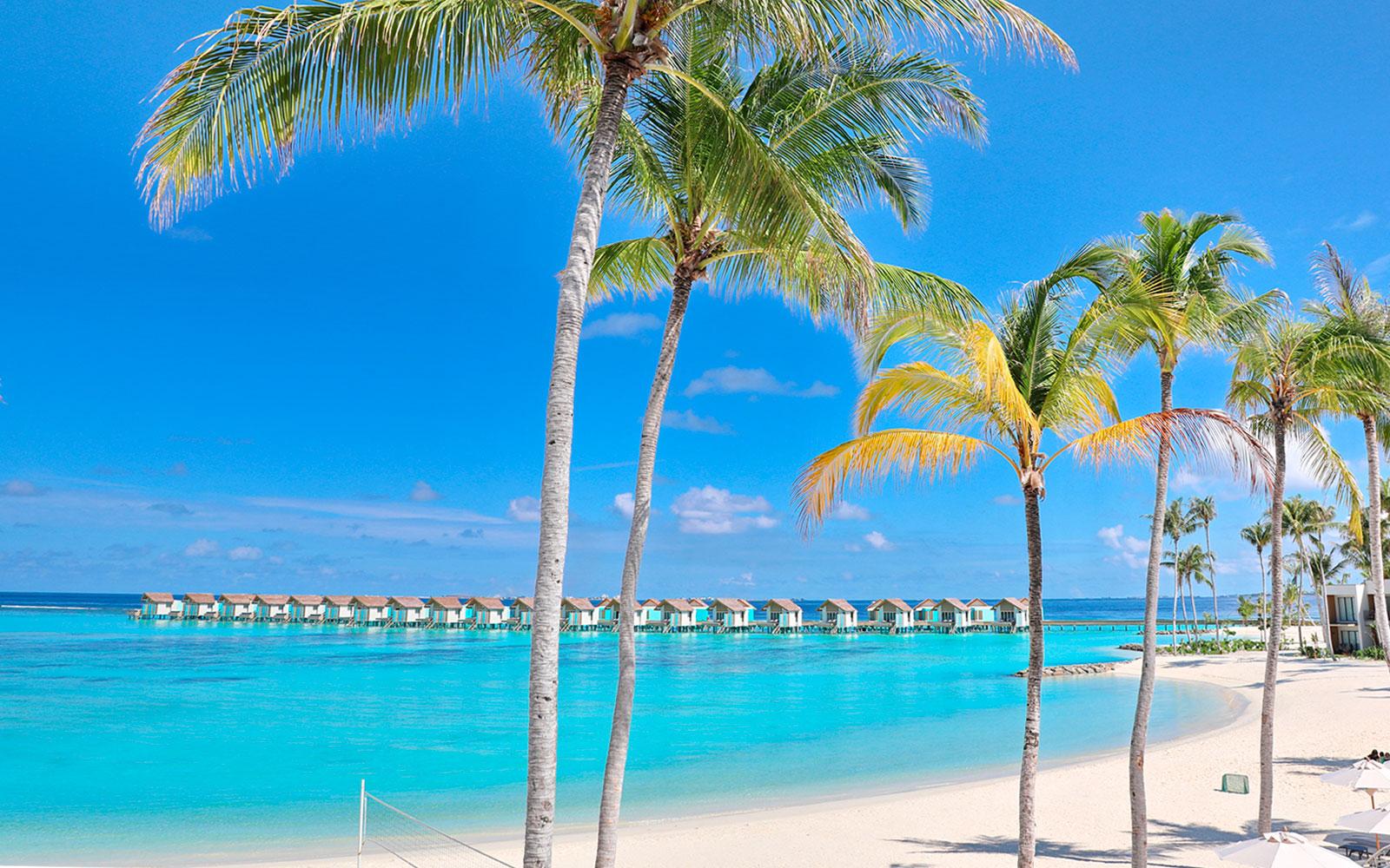 Maldive111119_1651.jpg