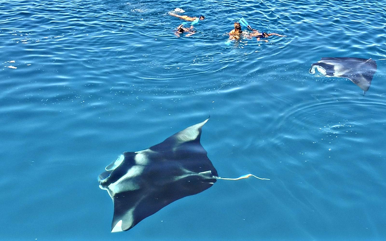 Maldive_271119_1452.jpg