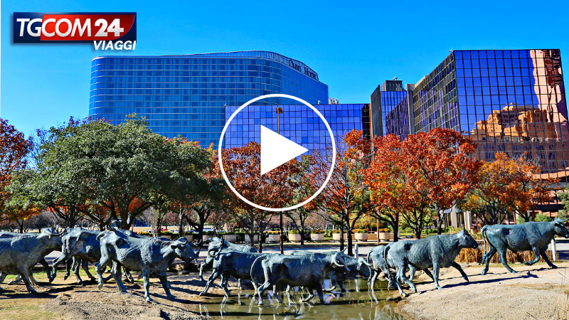 DALLAS, THANKSGIVING DAY