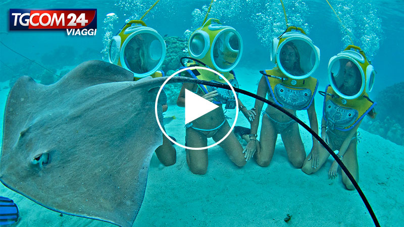 UNDERWATER TREKKING IN FRENCH POLYNESIA