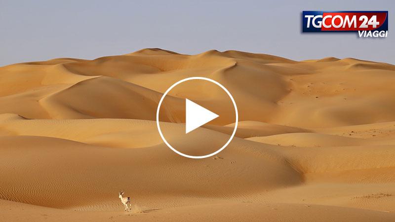 IL DESERTO DI ABU DHABI