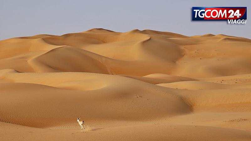 DONNAVVENTURA AD ABU DHABI: ALLA SCOPERTA DELLA CAPITALE DEGLI UAE