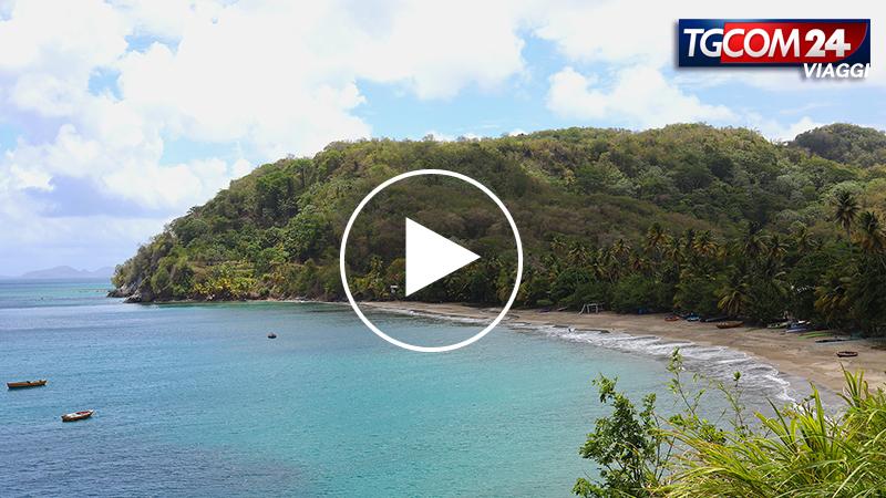 Tgcom Grenada - L'isola delle spezie