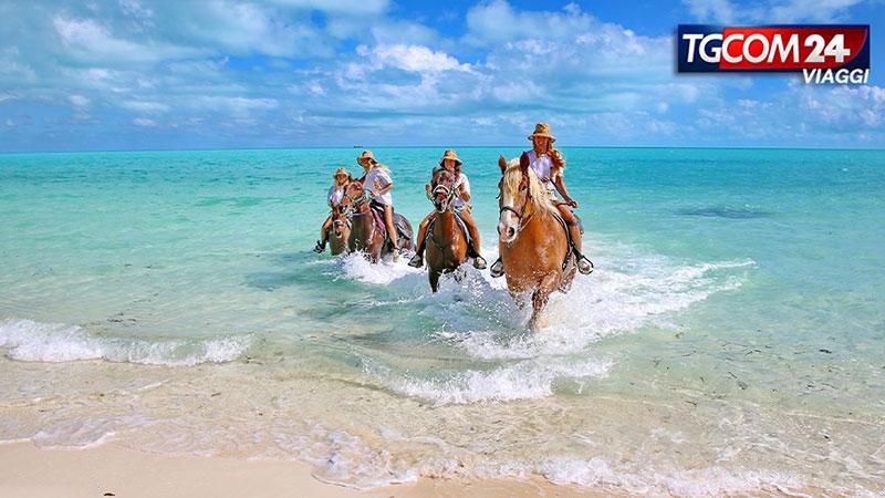 il sogno ad occhi aperti di Turks and Caicos